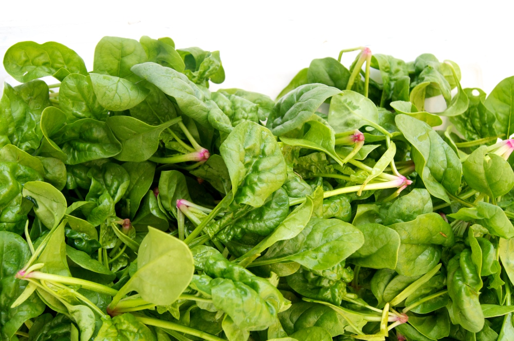 middle earth farm spinach
