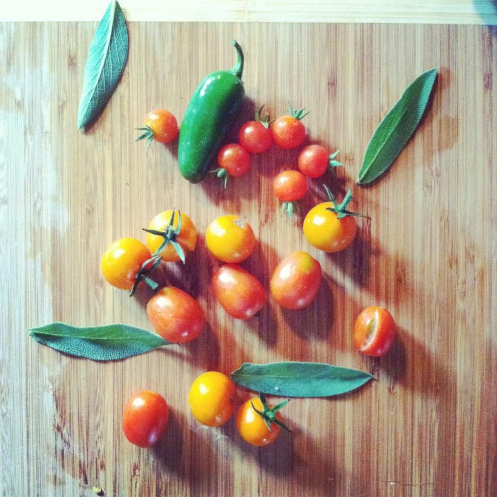cherry tomatoes, jalapenos, and sage