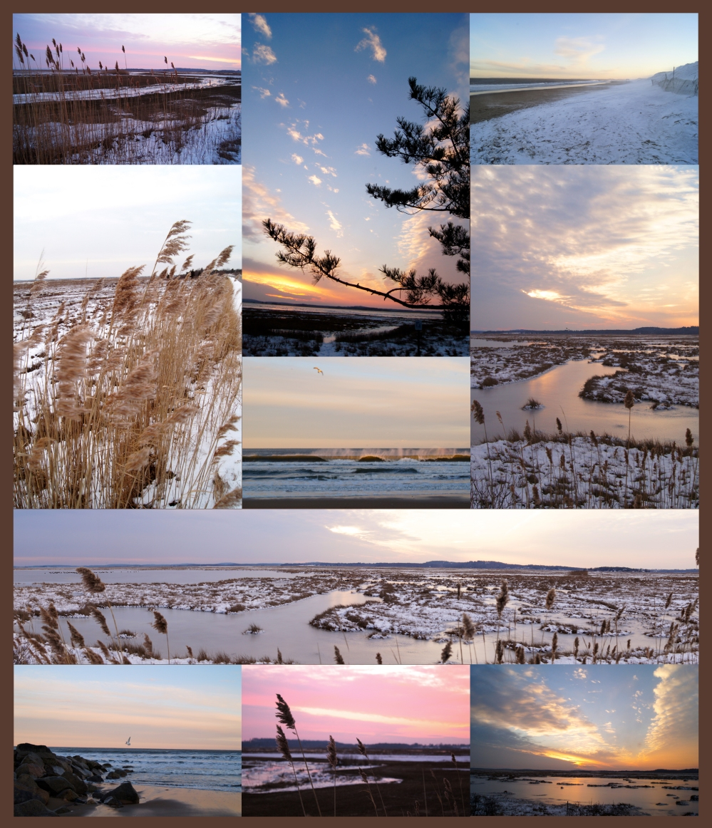 Winter beach collage