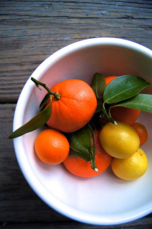 mandarin oranges, kumquats, limequats