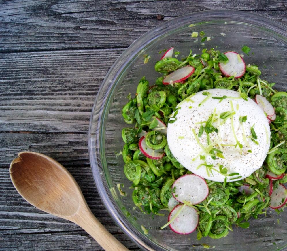 Fiddlehead & Burrata Salad with Salsa Verde