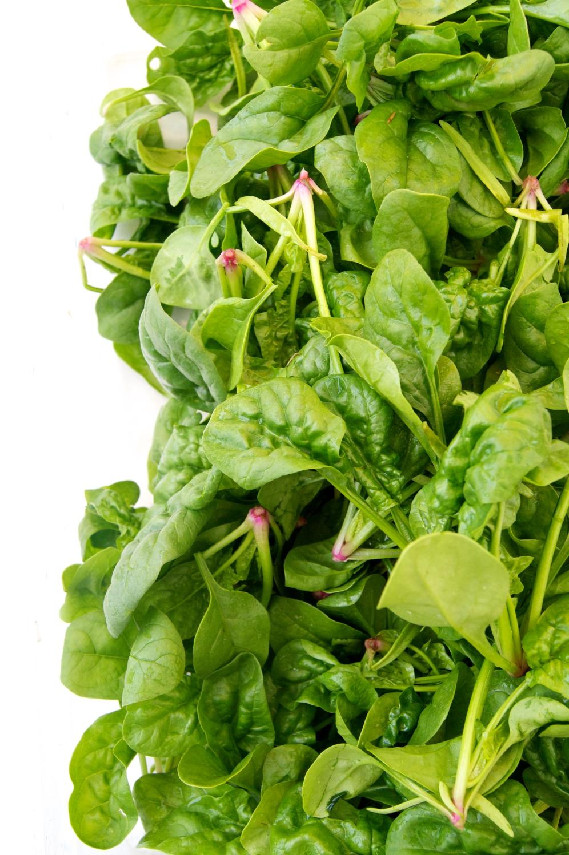 middle earth farm spinach