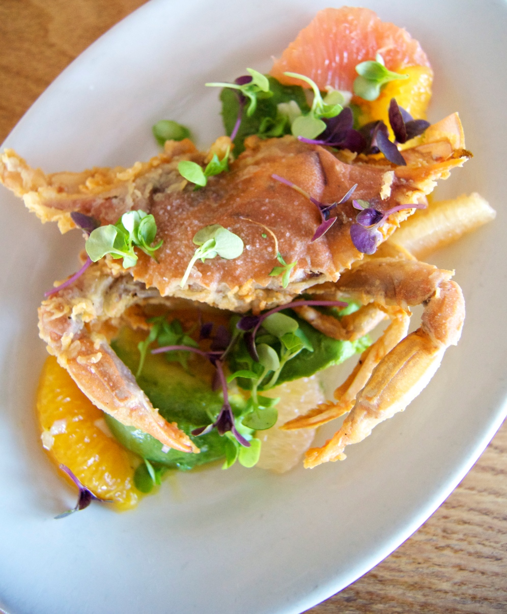 soft shell crab with citrus, avocado, and aioli