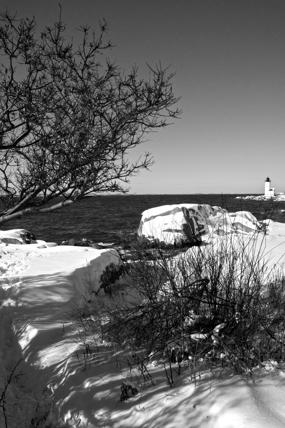 winter at lighthouse beach