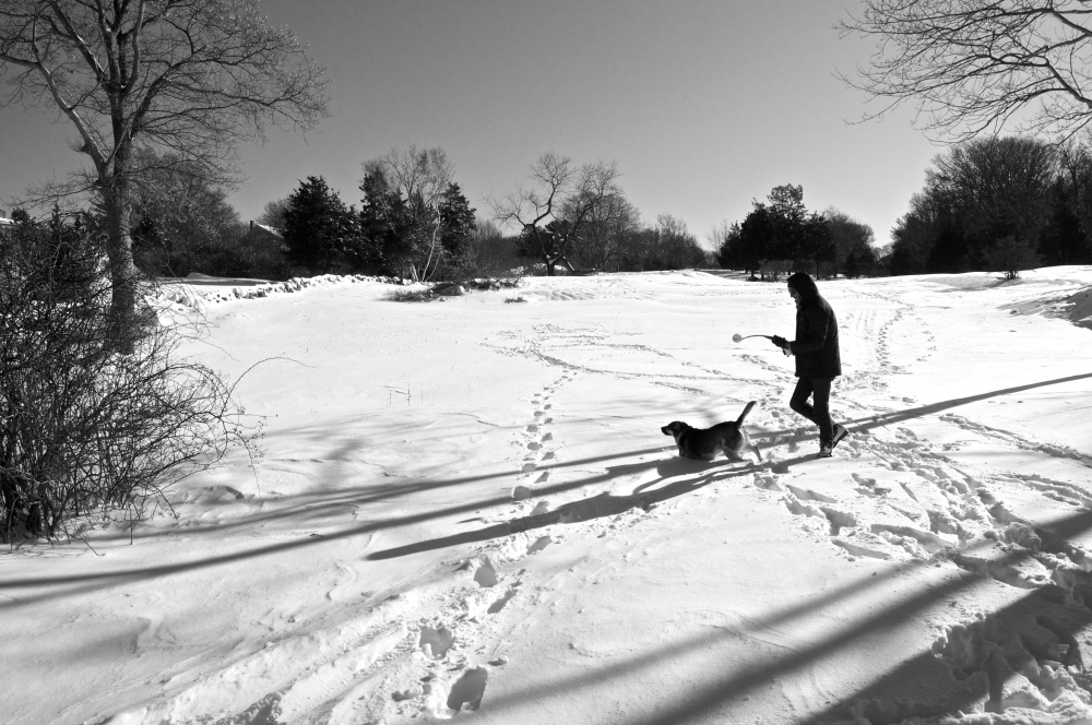 snowtime playtime