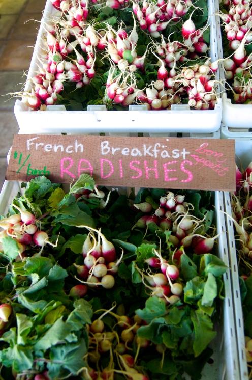 breakfast radishes at green string farm