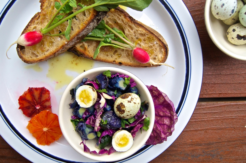 purple brussel sprouts, anchovy & radish toast, and a quail egg