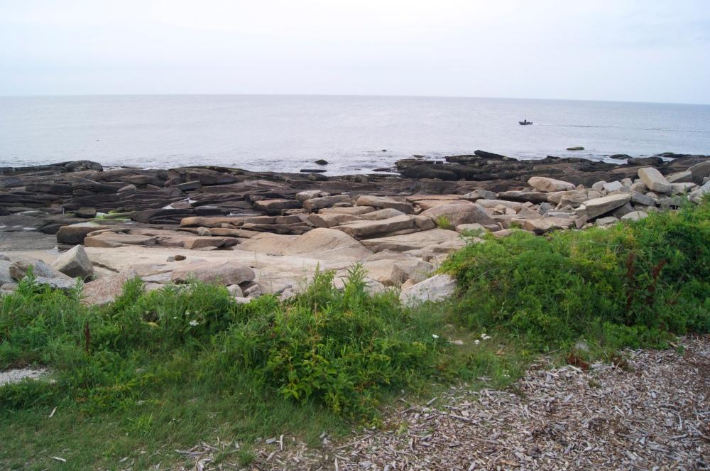 halibut point